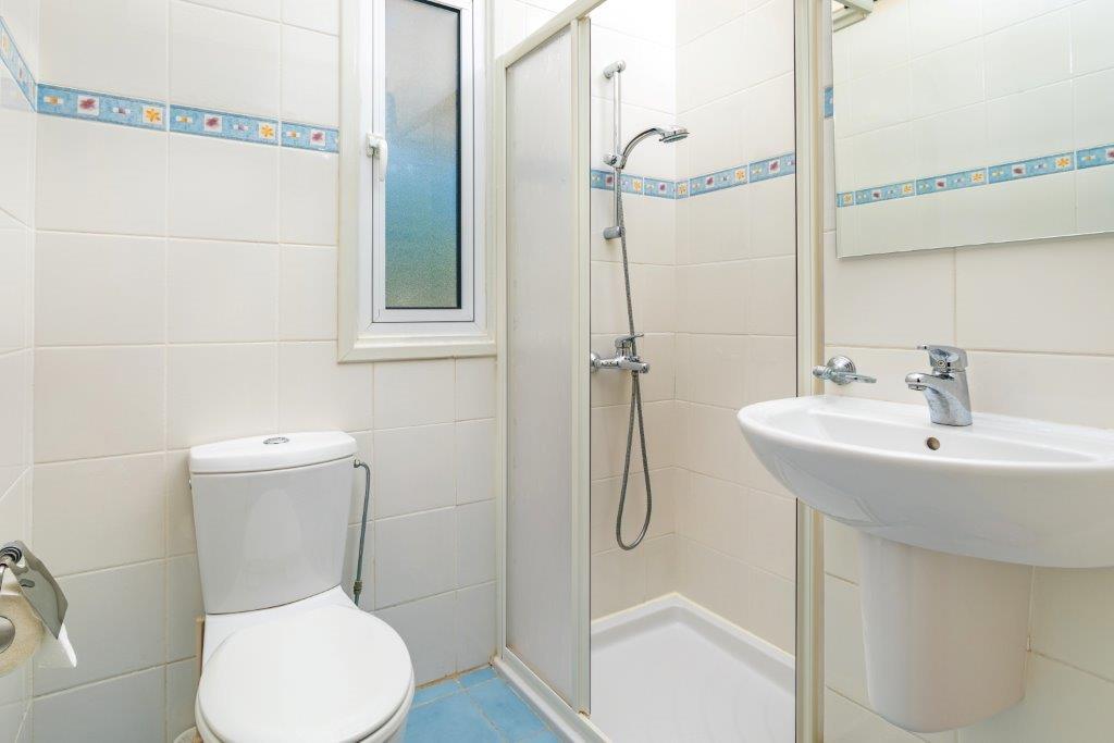 Гостевой туалет с душевой