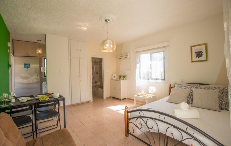 Купить недвижимость в Айя Напе