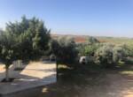 4-villa-in-frenaros-5106
