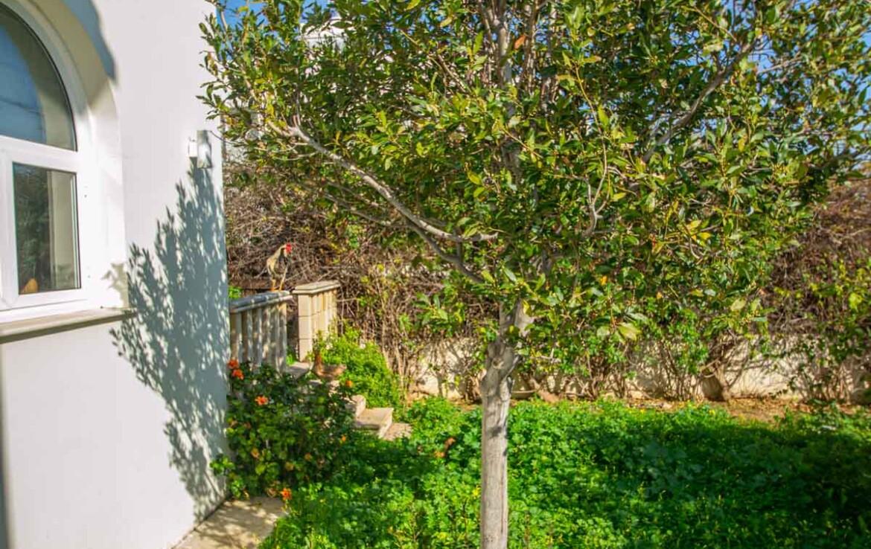 Купить дом на Кипре - сад