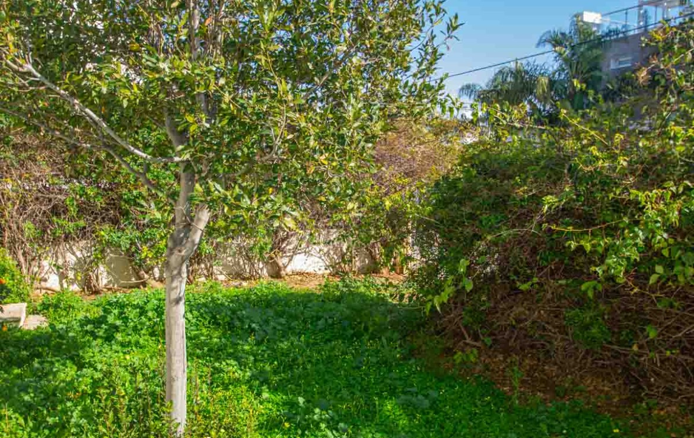 недвижимость Кипра - сад