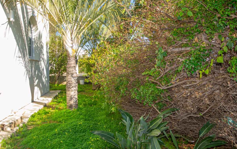 Объекты недвижимости на Кипре - сад