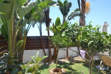 15-villa-in-ayia-thekla-4151